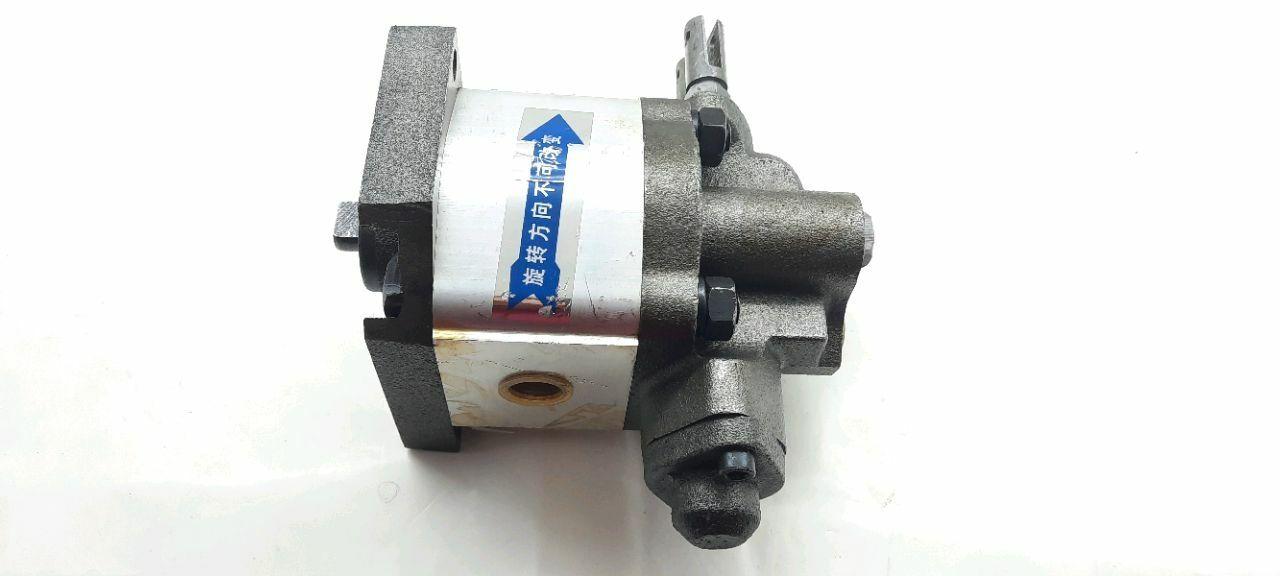 Pompa de ulei (ZH1100)